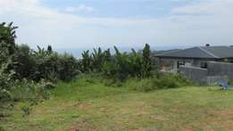 Large vacant stand 180 degree sea view in Trafalgar for sale R399 000