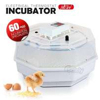 60 eggs incubator for all fertilized eggs