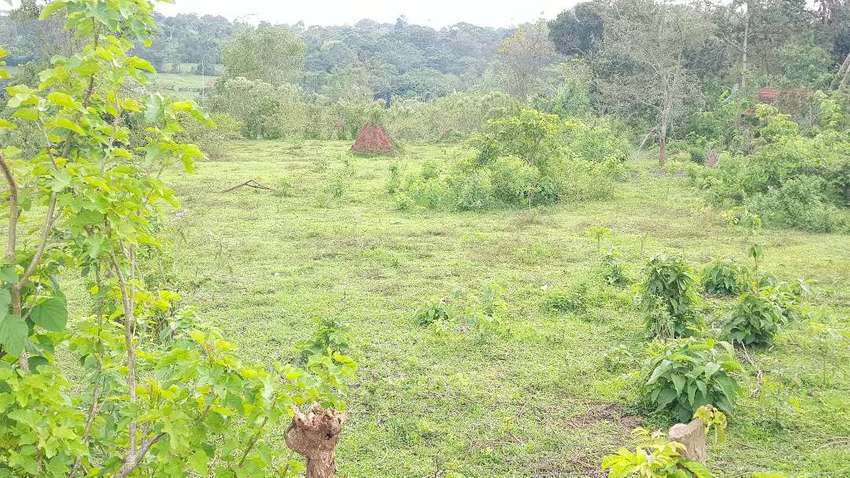 15led Acres In Z Ti Mityana Rd Half A Km From The Main 18m Each