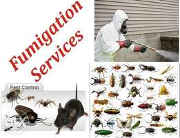 Fumigation services against rats,pests and weeds in Lagos