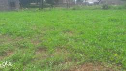 1/4 an acre on sale at Goshen Estate Mtwapa - Kilifi County