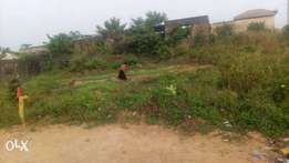 2 plots of land and a building Ikorodu