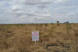 Prime Plots in RUIRU.