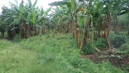 100x80ft plot for sale in Bukwali, Fort Portal at 27 millions.