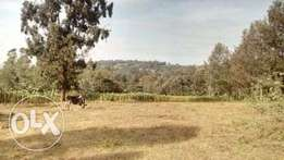 Prime 1.7 acre land for sale in Matasia Ngong