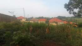 100*100ft plot in kira-kasangati road