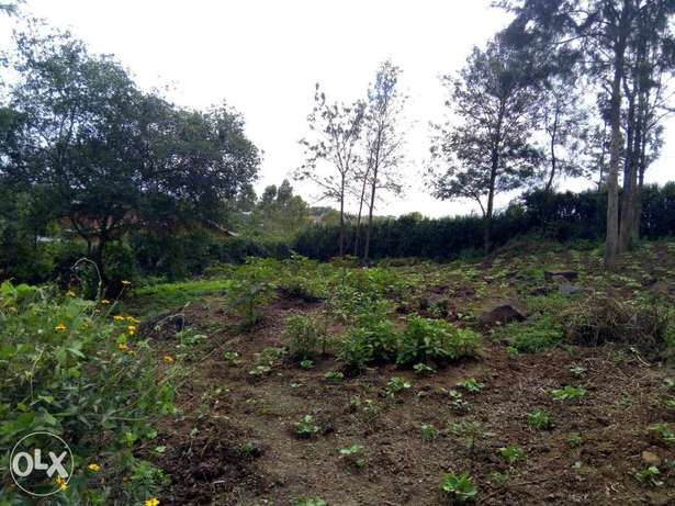 Prime 3 1/8 plots for sale Ongata Rongai - image 2