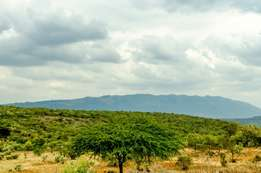 Prime Ngong plots on offer