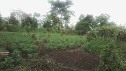 6acres of private millo land on sale in mukno-ndesse each at 5m