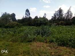 Half an acre in Kikuyu bypass for sale