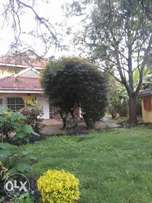 8 bedrooms townhouse on 1acre in kabaserian drive Lavington