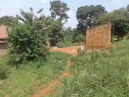 land for sale in bwebajja at 25m 100by50