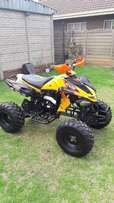 Big Boy 250 cc ATV