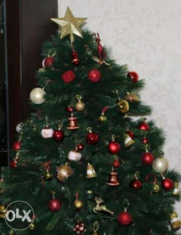 Xmas tree with accessories / used once 170 cm