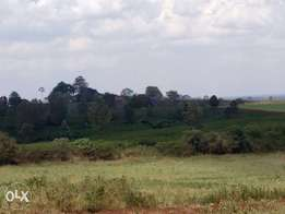 Plots near Migaa golf estate for sale from 2.5 M