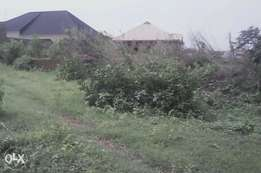 2plots of Land for sale with foundation