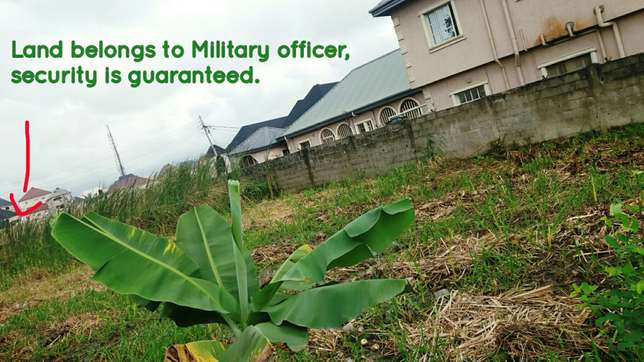 A freehold plot of land for sale Amuwo Odofin - image 5