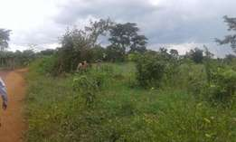 KIKYUSA-TOOKE KUULU: 5 acres for sale at 3. 6MILLION per acre with tit