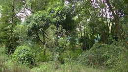 Westlands 1acre in westlands for sale only 370m