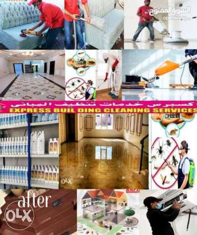 Express Cleaning & pest control service