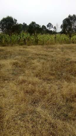 1/8 plots for sale Naromoru - image 4