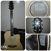 Acoustic Electric Guitar for sale