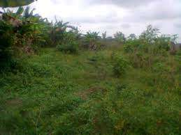 land for sale at Irhirhi measured 100 by 200 ft for 10million
