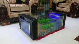 Coffee table aquariums
