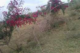 Extremely good area juja farm starting 300k.