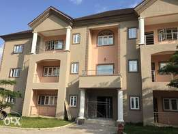 New 3 Bedroom Serviced Apartment With Attached Sq For Rent - Life Camp
