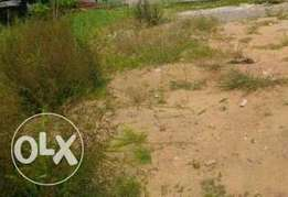 2000sqm of land in Lekki Phase 1, Zone CBD with C of O