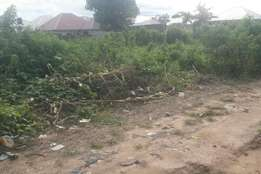 Nicely situated large buildable plot for sale in Dakwa