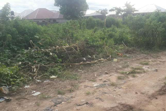 Nicely situated large buildable plot for sale in Dakwa Kagini - image 1