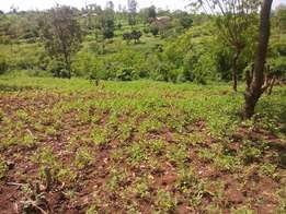 6.4 Acres of Fertile Agricultural land for sale bordering a stream