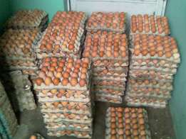 Stacks of fresh chicken Eggs Ready for supply