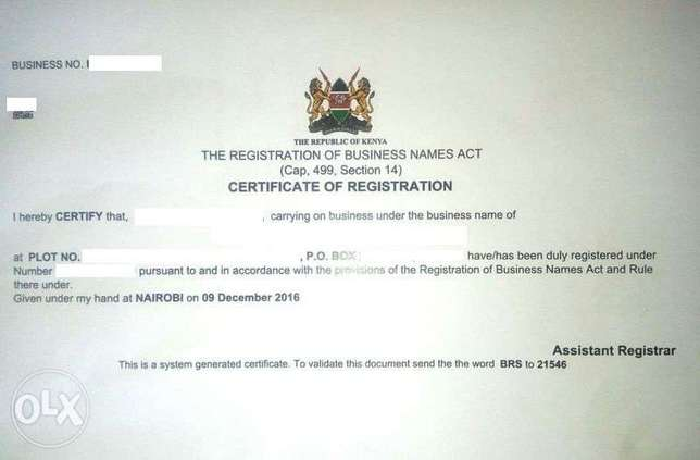 Business Name and Company Registration Services Nakuru East - image 1