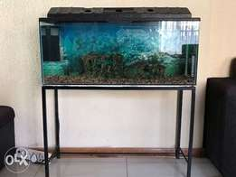 Fish tank complete with accessories