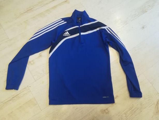 Bluza Adidas Lat Moda OLX.pl