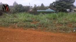 50*100 Prime Plot For Sale In Ruaka for 14Million