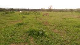 1/4 acre plot for sale in Kabarak for quick sale