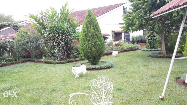 HOUSE For Sale Milimani - image 1
