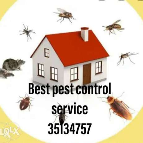 Pest control service available in