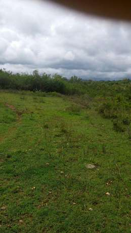 Agricultural Land for Sale Ideal for Mangoes and Oranges Farming Mananja - image 2