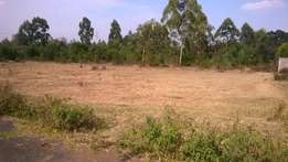 Land For Sale, Karen