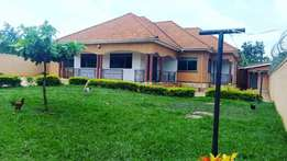 a four bedroom standalone house for rent in najjera