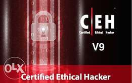 Certified Ethical Hacking Training.