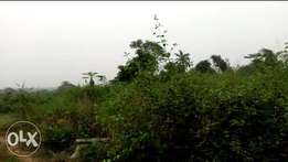 Over 500 plots of land available for sale at jeje imota for #400,000