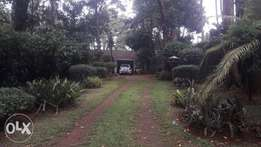 Selling 1 acre plot in Old Muthaiga