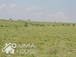 Prime land in Kitengela for sale in Acacia