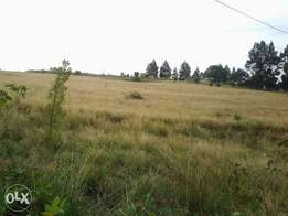 2× Land For Sale at Adams